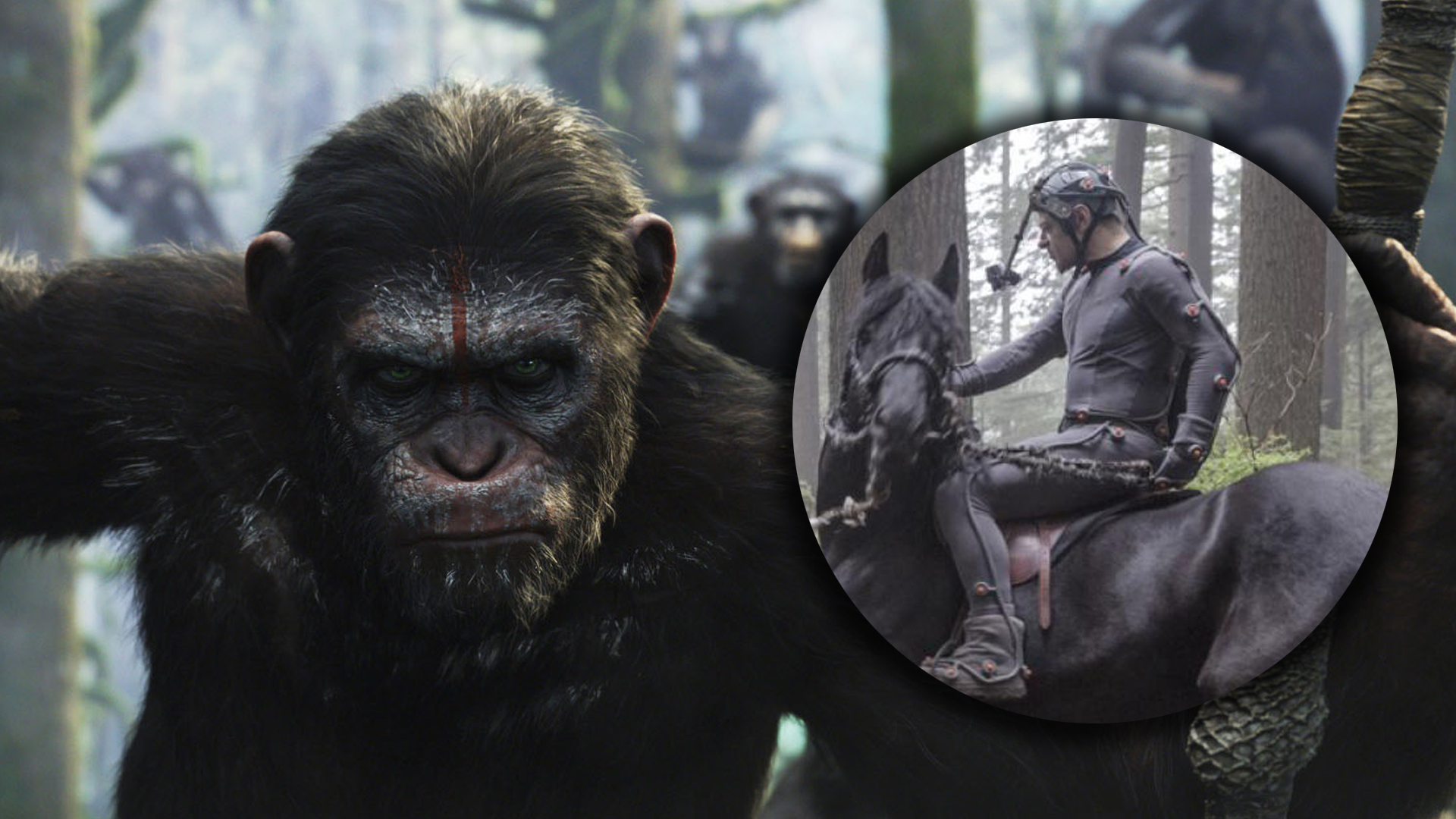 download dawn planet of the apes 2014